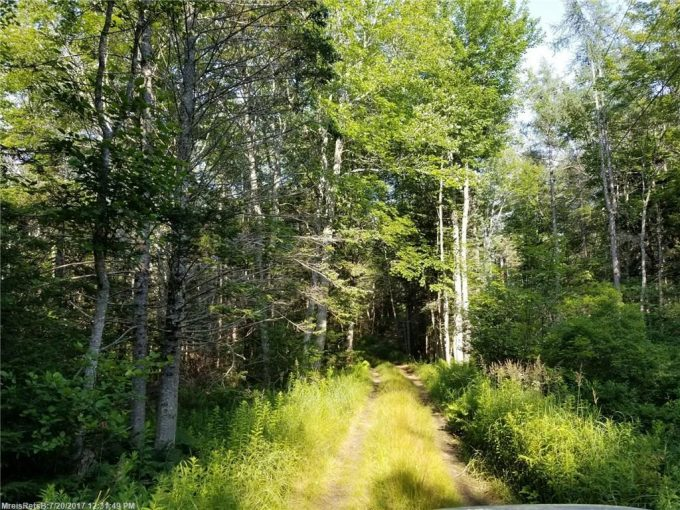 Price Reduced-26 Acres on Pemaquid Point